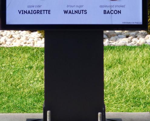 Bolt Down Pedestal for Digital Signage VIewStation ITSENCLOSURES